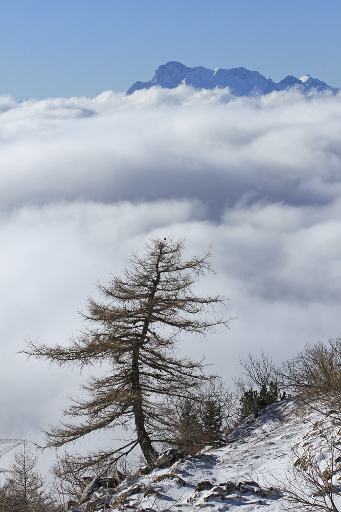 neige de printemps dans le Vercors