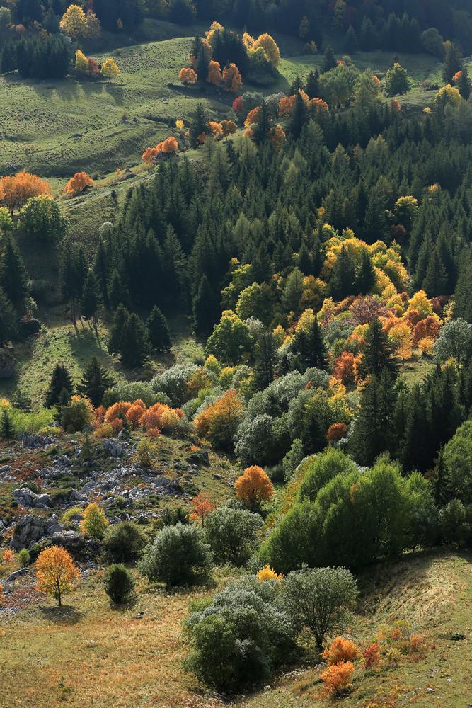 l'automne en Vercors