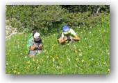 photographes en herbe