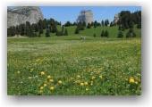 Au pays du Mont Aiguille